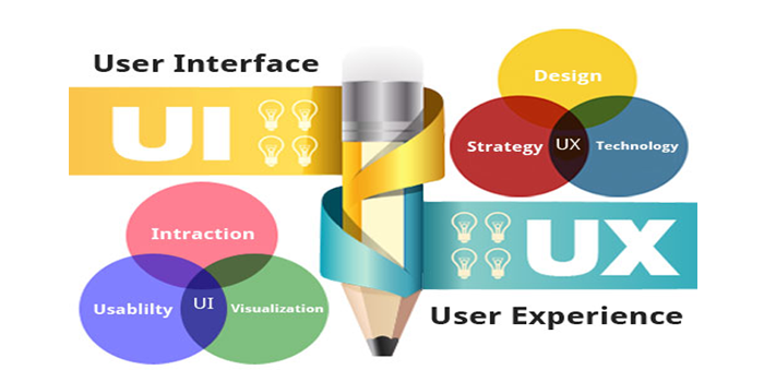 Website Designing Company in Chamba